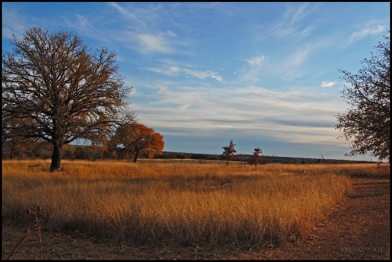 Photo of Eastland County Texas Countryside in the Fall